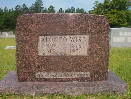WISE, ALONZO - Hempstead County, Arkansas | ALONZO WISE - Arkansas Gravestone Photos