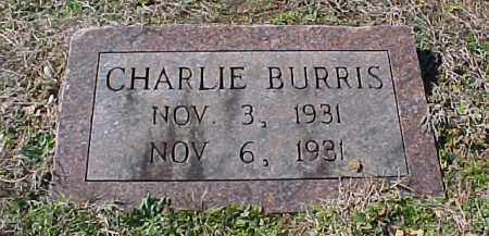 BURRIS, CHARLIE - Hot Spring County, Arkansas | CHARLIE BURRIS - Arkansas Gravestone Photos
