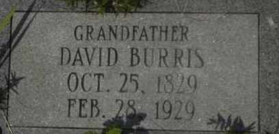 BURRIS, DAVID - Hot Spring County, Arkansas | DAVID BURRIS - Arkansas Gravestone Photos