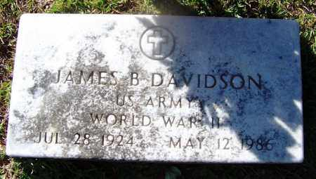 DAVIDSON (VETERAN WWII), JAMES B. - Hot Spring County, Arkansas | JAMES B. DAVIDSON (VETERAN WWII) - Arkansas Gravestone Photos