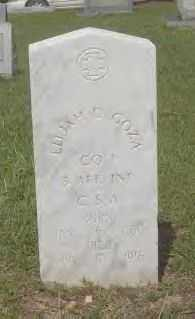 GOZA (VETERAN CSA), ELIJAH D. - Hot Spring County, Arkansas | ELIJAH D. GOZA (VETERAN CSA) - Arkansas Gravestone Photos