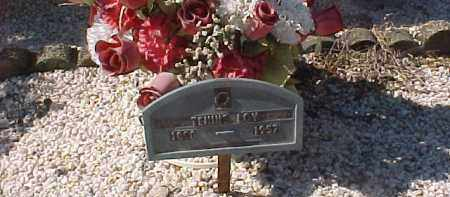 LOY, TENNIE - Hot Spring County, Arkansas | TENNIE LOY - Arkansas Gravestone Photos
