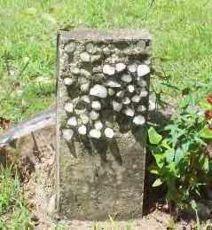 UNKNOWN, UNKNOWN - Hot Spring County, Arkansas | UNKNOWN UNKNOWN - Arkansas Gravestone Photos