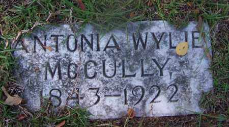 MCCULLY, ANTONIA - Hot Spring County, Arkansas | ANTONIA MCCULLY - Arkansas Gravestone Photos