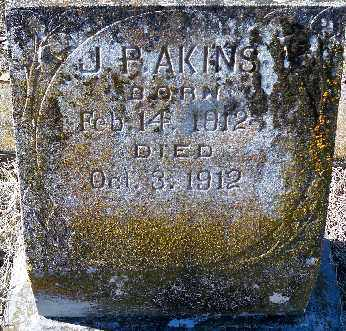 AKINS, J. P. - Independence County, Arkansas | J. P. AKINS - Arkansas Gravestone Photos
