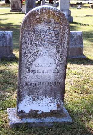 BAXTER, ELISHA - Independence County, Arkansas | ELISHA BAXTER - Arkansas Gravestone Photos
