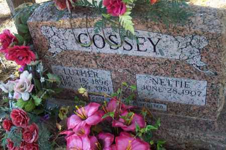 CORSSEY, JAMES LUTHER DARLING - Independence County, Arkansas | JAMES LUTHER DARLING CORSSEY - Arkansas Gravestone Photos