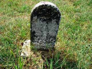 FERGASON, MINNIE A. - Independence County, Arkansas | MINNIE A. FERGASON - Arkansas Gravestone Photos