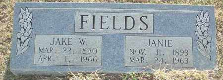 FIELDS, JANIE - Independence County, Arkansas | JANIE FIELDS - Arkansas Gravestone Photos
