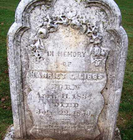 GIBBS, HARRIET C - Independence County, Arkansas | HARRIET C GIBBS - Arkansas Gravestone Photos