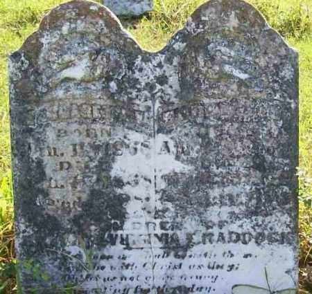 HADDOCK, MARGARET A. V. - Independence County, Arkansas | MARGARET A. V. HADDOCK - Arkansas Gravestone Photos