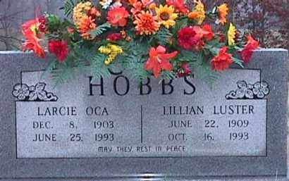 HOBBS, LARCIE OCA - Independence County, Arkansas | LARCIE OCA HOBBS - Arkansas Gravestone Photos