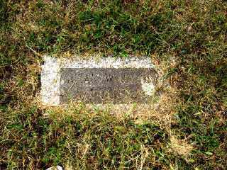 WILLIAMS HUDDLESTON, SUSAN - Independence County, Arkansas | SUSAN WILLIAMS HUDDLESTON - Arkansas Gravestone Photos