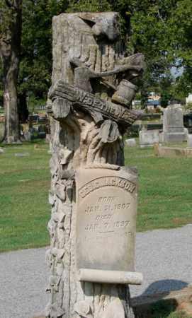 JACKSON, GEORGE C. - Independence County, Arkansas | GEORGE C. JACKSON - Arkansas Gravestone Photos
