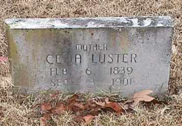 LUSTER, CELIA A - Independence County, Arkansas | CELIA A LUSTER - Arkansas Gravestone Photos