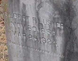 LUSTER, GILBERT F - Independence County, Arkansas | GILBERT F LUSTER - Arkansas Gravestone Photos