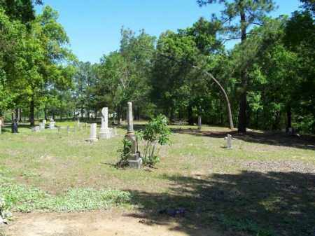 *OVERVIEW, . - Independence County, Arkansas | . *OVERVIEW - Arkansas Gravestone Photos