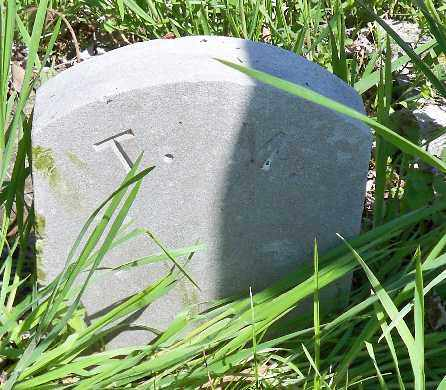 MASNER, TENNIE - Independence County, Arkansas | TENNIE MASNER - Arkansas Gravestone Photos