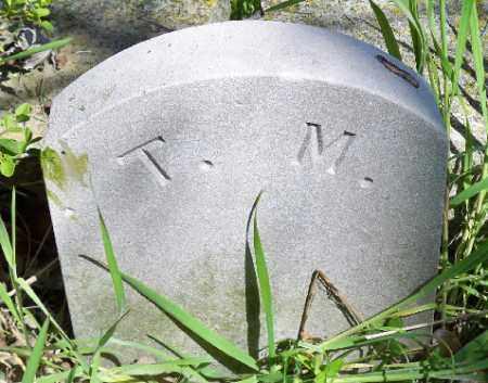 MASNER, TINT - Independence County, Arkansas   TINT MASNER - Arkansas Gravestone Photos