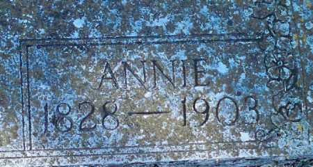 PARKS, ANNIE - Independence County, Arkansas | ANNIE PARKS - Arkansas Gravestone Photos