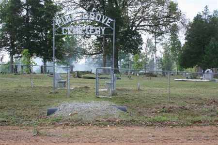 *PINE GROVE  OVERVIEW,  - Independence County, Arkansas |  *PINE GROVE  OVERVIEW - Arkansas Gravestone Photos
