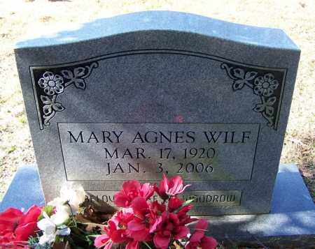 WILF, MARY AGNES - Independence County, Arkansas | MARY AGNES WILF - Arkansas Gravestone Photos