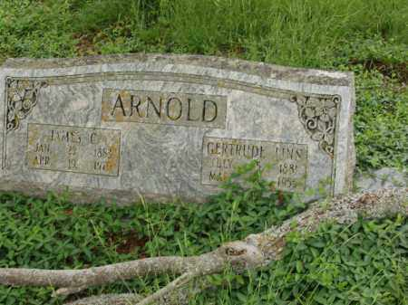 ARNOLD, JAMES C - Izard County, Arkansas | JAMES C ARNOLD - Arkansas Gravestone Photos