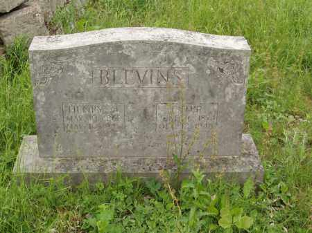 BLEVINS, ESTER - Izard County, Arkansas | ESTER BLEVINS - Arkansas Gravestone Photos