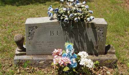 BURNS, ROSIE JANE - Izard County, Arkansas | ROSIE JANE BURNS - Arkansas Gravestone Photos