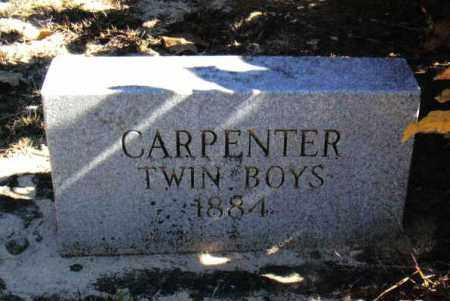 CARPENTER, TWIN SONS - Izard County, Arkansas | TWIN SONS CARPENTER - Arkansas Gravestone Photos