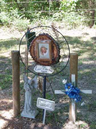 CRIDER, JESSIE P - Izard County, Arkansas | JESSIE P CRIDER - Arkansas Gravestone Photos