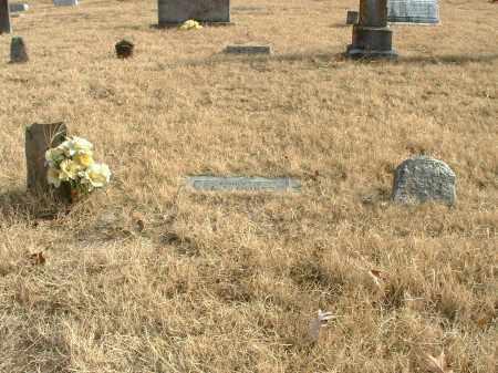 DOBBS, JOHN IRA - Izard County, Arkansas | JOHN IRA DOBBS - Arkansas Gravestone Photos