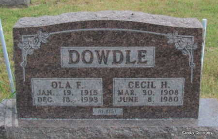DOWDLE, CECIL HERMAN - Izard County, Arkansas | CECIL HERMAN DOWDLE - Arkansas Gravestone Photos