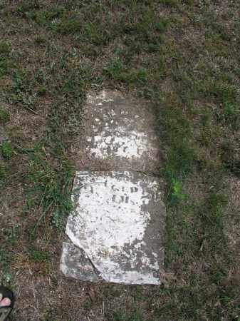 FELTS, JOHN D. - Izard County, Arkansas | JOHN D. FELTS - Arkansas Gravestone Photos