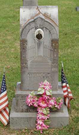 FINLEY, AUBREY W - Izard County, Arkansas | AUBREY W FINLEY - Arkansas Gravestone Photos
