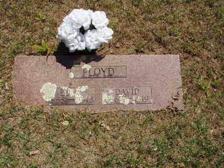 FLOYD, DAVID - Izard County, Arkansas | DAVID FLOYD - Arkansas Gravestone Photos