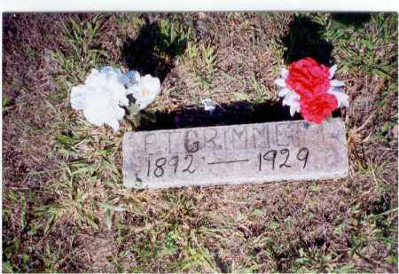 TALMAGE GRIMMETT, EARNEST - Izard County, Arkansas | EARNEST TALMAGE GRIMMETT - Arkansas Gravestone Photos
