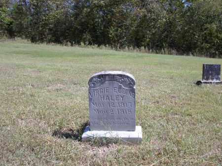 HALEY, VIRGIE  EUDINE - Izard County, Arkansas | VIRGIE  EUDINE HALEY - Arkansas Gravestone Photos