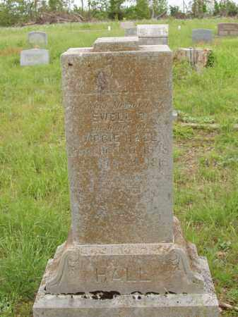 HALL, EWELL DEWITT - Izard County, Arkansas | EWELL DEWITT HALL - Arkansas Gravestone Photos