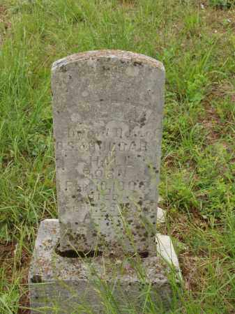 HALL, HULDAH - Izard County, Arkansas | HULDAH HALL - Arkansas Gravestone Photos