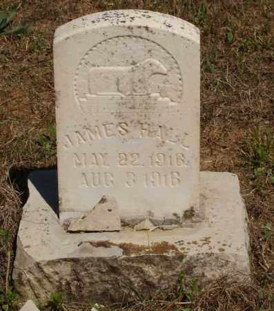 HALL, JAMES - Izard County, Arkansas | JAMES HALL - Arkansas Gravestone Photos