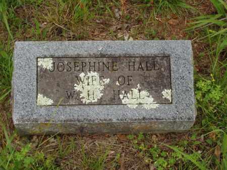 HALL, MARY JOSEPHINE - Izard County, Arkansas | MARY JOSEPHINE HALL - Arkansas Gravestone Photos