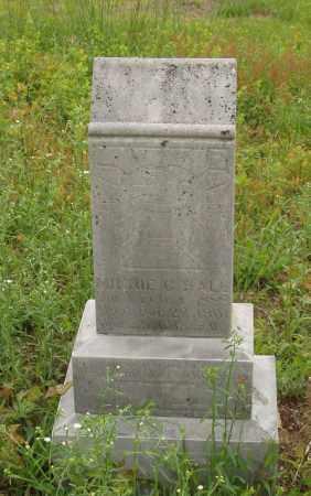 HALL, MINNE C - Izard County, Arkansas   MINNE C HALL - Arkansas Gravestone Photos