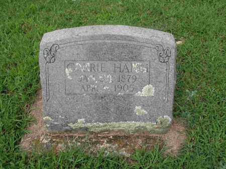 MILLER HAMM, CARRIE A. - Izard County, Arkansas | CARRIE A. MILLER HAMM - Arkansas Gravestone Photos
