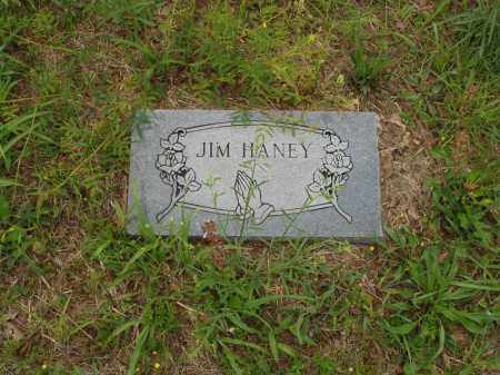 HANEY, JIM - Izard County, Arkansas | JIM HANEY - Arkansas Gravestone Photos