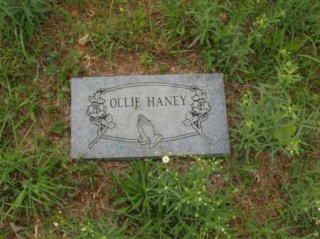 HANEY, OLLIE - Izard County, Arkansas | OLLIE HANEY - Arkansas Gravestone Photos