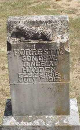 HAYDEN, FORREST W. - Izard County, Arkansas | FORREST W. HAYDEN - Arkansas Gravestone Photos