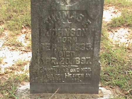 JOHNSON, THOMAS E. - Izard County, Arkansas | THOMAS E. JOHNSON - Arkansas Gravestone Photos