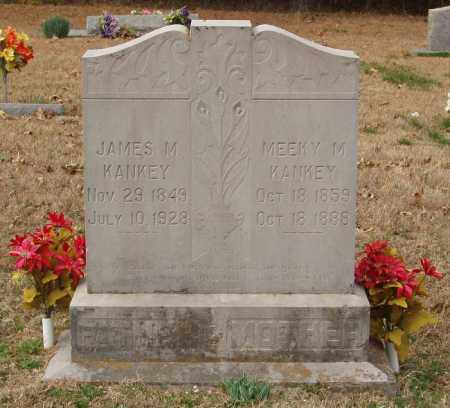 KANKEY, JAMES M - Izard County, Arkansas | JAMES M KANKEY - Arkansas Gravestone Photos