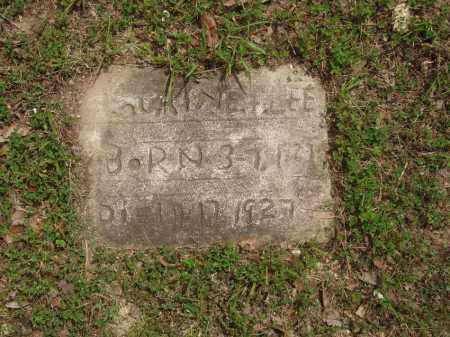 LEE, LAURINE F - Izard County, Arkansas | LAURINE F LEE - Arkansas Gravestone Photos